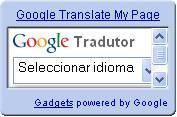 Google Gadget Tradutor
