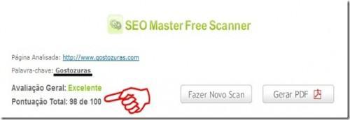 seo master scanner