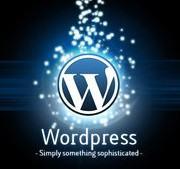 5 motivos para você escolher o WordPress